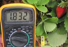 Leaf Sensor on Strawberry_Meter